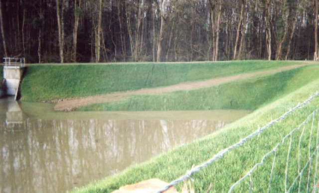 BASSIN VEGETALISE TERACRO (72)